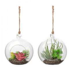 Plante décorative 119473...
