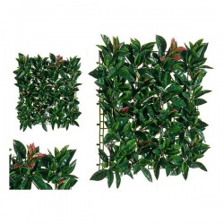 Plante décorative Vert...
