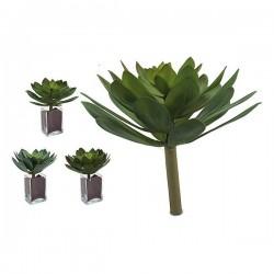Plante décorative Volets 3...
