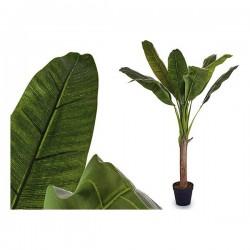Plante décorative Volets...