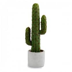 Cactus Plastique Cactus (10...
