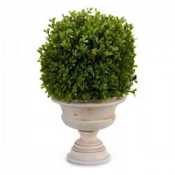 Plante décorative (33 x 37...