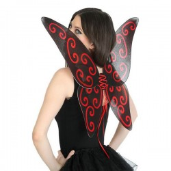 Ailes de Papillon 112742...