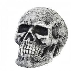 Crâne (34 x 27 x 25 cm) Gris