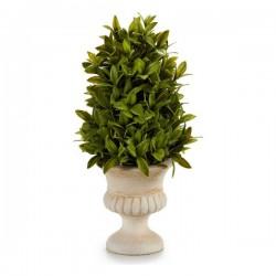 Plante décorative (20 x 33...