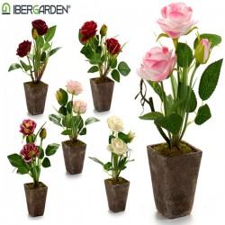 Pot Rose Plastique